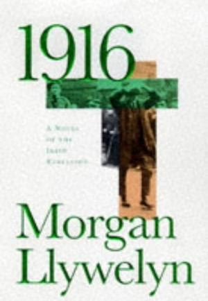 Pride of Lions by Morgan Llywelyn 1996 Hardcover Ireland Historical Fi